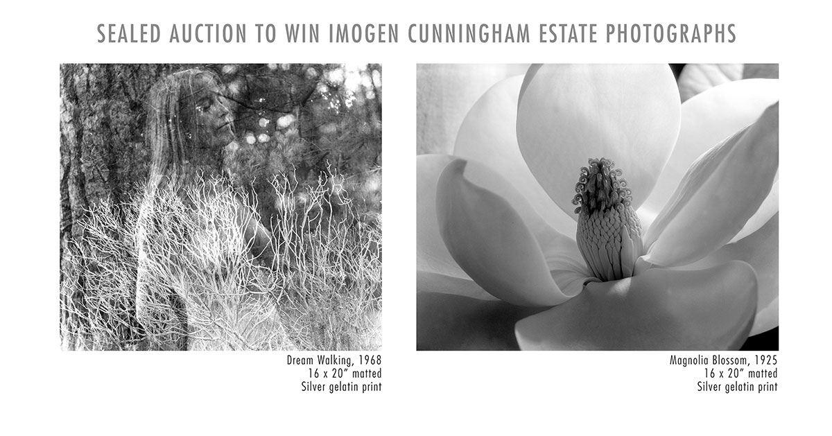 Sealed auction to win Imogen Cunningham Estate Photographs